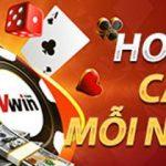 Casino Vwin hoàn trả mỗi ngày lên đến 0.88%