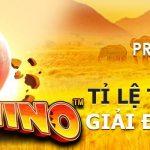 vwin giới thiệu cách chơi Slot Game : Great Rhino Deluxe – Trò chơi PP